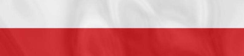 Таможенное оформление грузов из Польши